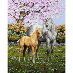 GХ4225 картины по номерам Лошадь и жеребенок  40х50 см