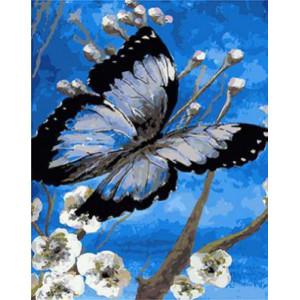 GХ4330 картины по номерам Бабочка на синем фоне  40х50 см