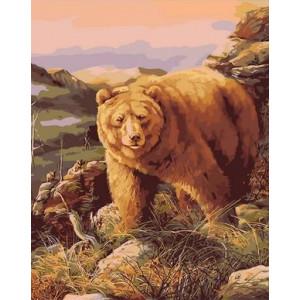 Q2176 Картина по номерам толстый медведь 40x50 см