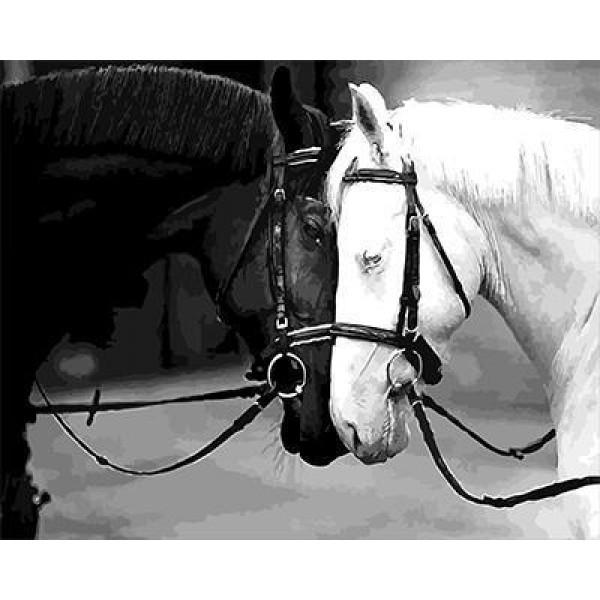 """GX5658 """"Черно-белые лошади"""", 40х50 см"""