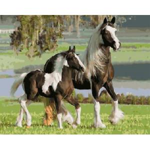 """GX5842 """"Белогривые лошади"""", 40х50 см"""