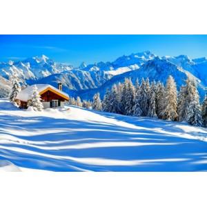 """GX22523 """"Зимний домик на вершине холма"""", 40х50 см"""
