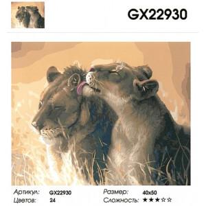 """GX22930 """"Львица облизывает льва"""", 40х50 см"""