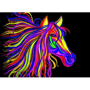 "GX22476 ""Голова радужной лошади"""", 40х50 см"