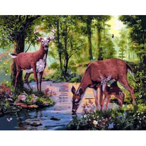 """GX5724 Картина по номерам """"Олени у реки"""", 40х50 см"""