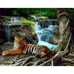 """GX22381 """"Тигр лежит у водопада"""", 40х50 см"""