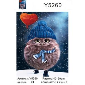 """Y5260 картины по номерам  """"Совенок с воздушным сердечком"""", 40х50 см"""