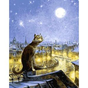 GХ4450 картина по номерам Кот на крыше лунной ночью  40х50 см