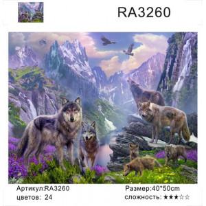 """RA3260 """"Волки в горах"""", 40х50 см"""