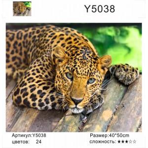 """Y5038 """"Леопард лежит"""", 40х50 см"""