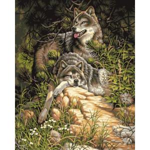 B393 Картина по номерам волчья охота 40x50 купить в Омске недорого