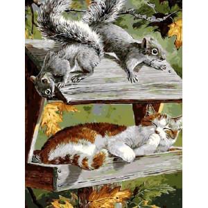 """GX8754 Картина раскраска по номерам на холсте """"Белки и кошка"""" 40х50см купить в Омске недорого"""
