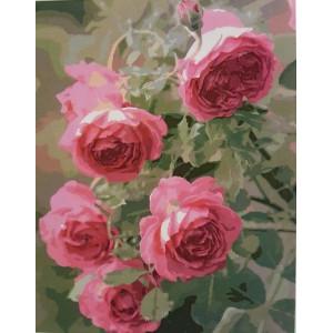 """GX8983 Картина по номерам """"Прекрасные розы"""": (40x50) купить в Омске недорого"""