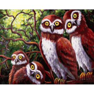 """GX9529 картина по номерам """"Любопытные совы"""" 40х50 см"""