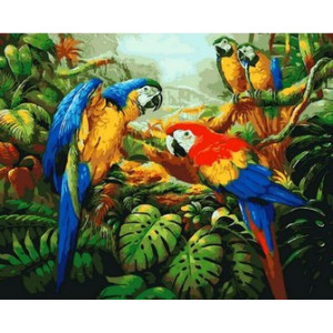 Q1078 Картина по номерам три ярких попугая 40x50 см купить в Омске недорого