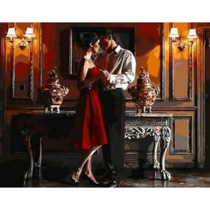 Q1272 Картина по номерам страсть и танец 40x50 см купить в Омске недорого