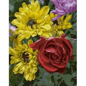 Q1574 Картина по номерам дизайнерский букет 40x50 см купить в Омске недорого