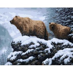 Q1772 Картина по номерам медведи в снежном лесу 40x50см