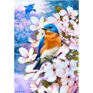 Q1805 Картина по номерам птичка в на белой ветке 40x50 см купить в Омске недорого