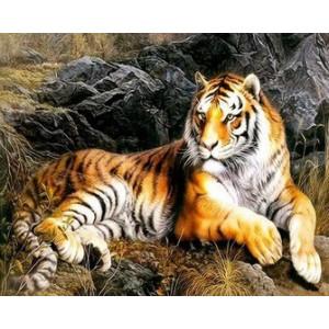 Q1997 Картина по номерам тигр в степи 40x50см купить в Омске недорого