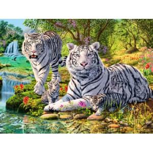 Q2102 Картина по номерам два белых тигра 40x50 купить в Омске недорого