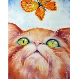 Q2158 Картина по номерам рыжий кот и бабочка 40x50 купить в Омске недорого