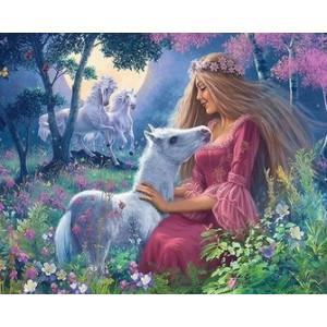 Q2215 Картина по номерам принцесса с пони 40x50 купить в Омске недорого