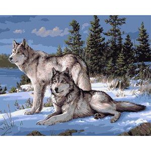 GХ4430 картина по номерам Два волка зимой 40х50 см