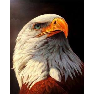 Q2243 Картина по номерам грозный орел 40x50 купить в Омске недорого