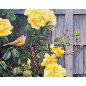 Q2249 Картина по номерам желтые розы 40x50 купить в Омске недорого