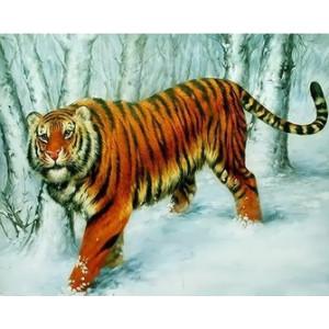 Q2278 Картина по номерам тигр в лесу 40x50 купить в Омске недорого