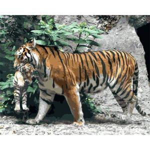 "GХ3795 ""Тигрица несет тигренка"" , 40х50 см"
