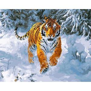 "GX21757 ""Тигр бежит по снегу"", 40х50 см"