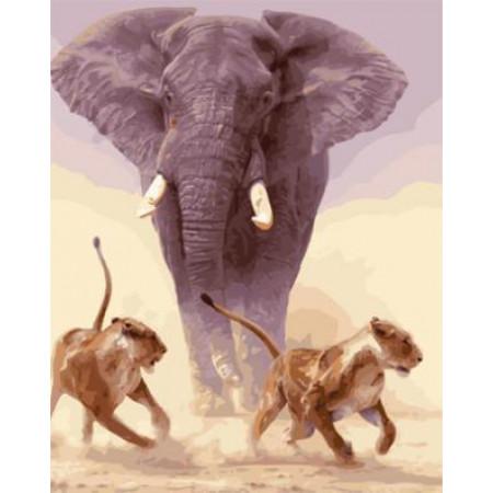 "GX21862 ""Слон и две львицы"", 40х50 см"