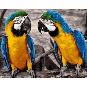 """GX22033 """"Два желто-синих попугая"""", 40х50 см"""