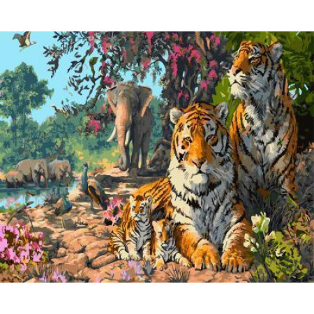 "GX5723 ""Тигры, слоны, павлины"", 40х50 см"