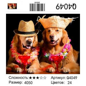 "Q4049 ""Пара собак с коктейлями"", 40х50 см"