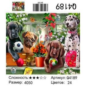 "Q4189 ""Щенки с мячиками"", 40х50 см"