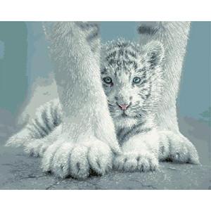 "GХ4269 ""Белый тигренок за лапами"" , 40х50 см"
