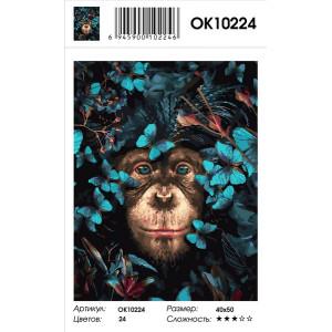 OK10224 Шимпанзе в цветах картина по номерам 40х50