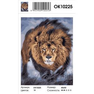 OK10225 Лев картина по номерам 40х50