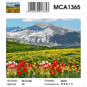 """MCA1365 Картина по номерам """"Тюльпаны в горах"""", 40х50 см"""