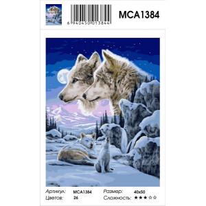 """MCA1384 Картина по номерам """"Взгляд в ночи"""", 40х50 см"""