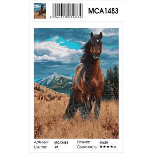 "MCA1483 Картина по номерам ""Степной конь"", 40х50 см"