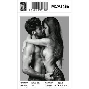 "MCA1486 Картина по номерам ""Страстная пара"", 40х50 см"