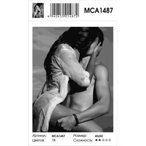 """MCA1487 Картина по номерам """"Страстные объятия влюбленных"""", 40х50 см"""