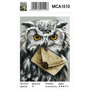 """MCA1510 Картина по номерам """"Вам письмо"""", 40х50 см"""