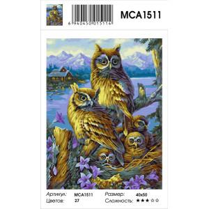 """MCA1511 Картина по номерам """"Совиное семейство"""", 40х50 см"""