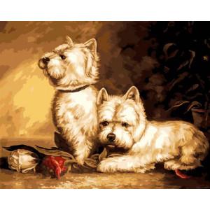 GX21513 Картина по номерам 40х50  Терьеры