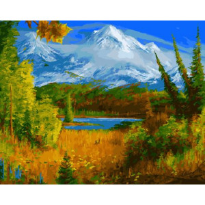GX22991 Картина по номерам 40х50  Вид на горы
